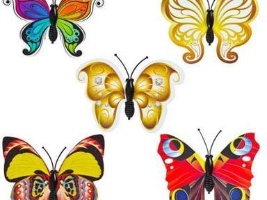 Набор магнитов бабочки 5шт