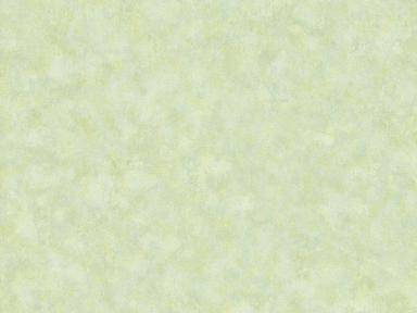 10038-02 Обои 1,06*10 м флиз гор тис  Вело Уни сал