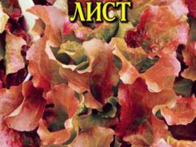 Салат Шоколадный лист 1г