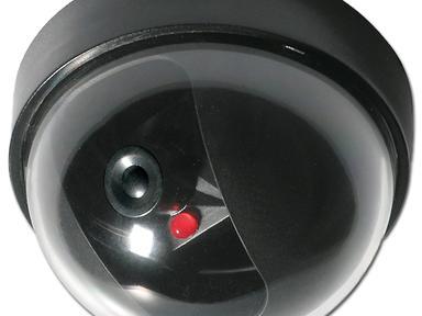 Муляж внутренней купольной камеры 45-0220