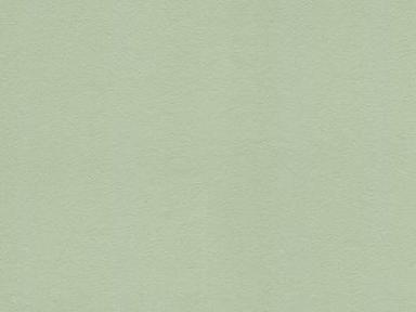 1203-1 Обои 1,06*10 м  флиз горяч тис Аделина св.зел