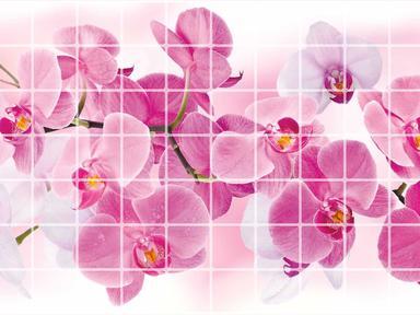 ПВХ панель Орхидея розея 955х480