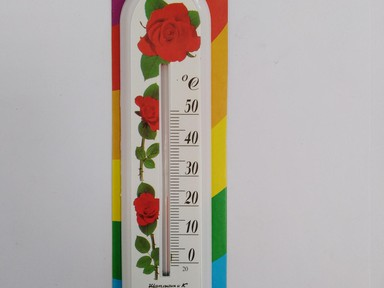 Термометр домашний Цветок