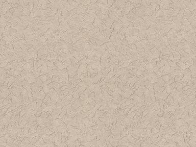 0904-5  Обои 1,06*10 м флиз горяч  тисн Ирэн купуч