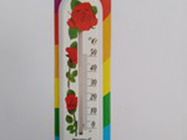Термометр домашний Цветок П-1