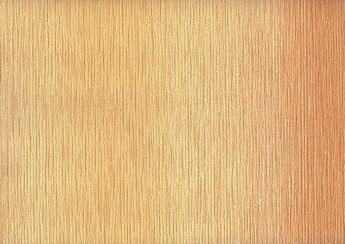 6091-53 ОБОИ 0,53*10 м  бумажныеГолландия Фон