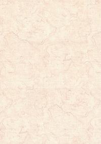 0346/11 ОБОИ 1,06*10 м  флиз горяч тисн  Отражение  роз