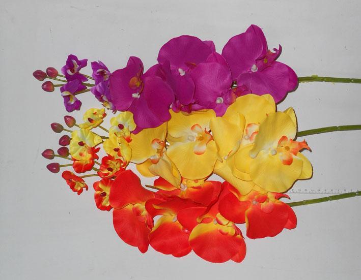 Ветка орхидеи ассорти