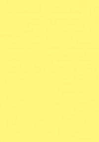 Пленка с/к 0,45м*8м 7026 D&B св желтая