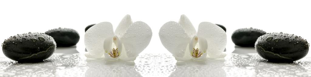 МДФ фартук  Орхидея №1   2440х610х3 мм