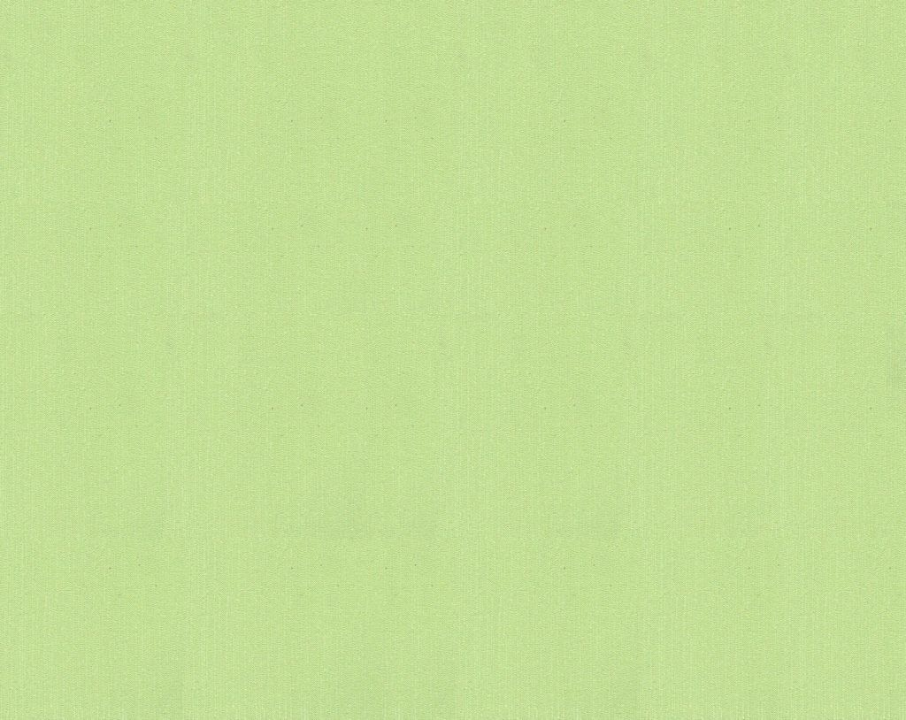2168-73 Обои флиз горяч тис 1,06*10 м Аравия зел