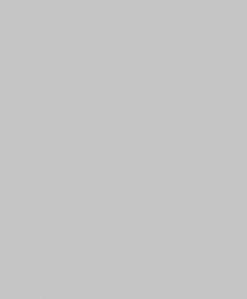 "10114-02 Обои 1,06*10 м  флиз горяч тис ""Тачки"" фон св-сер"
