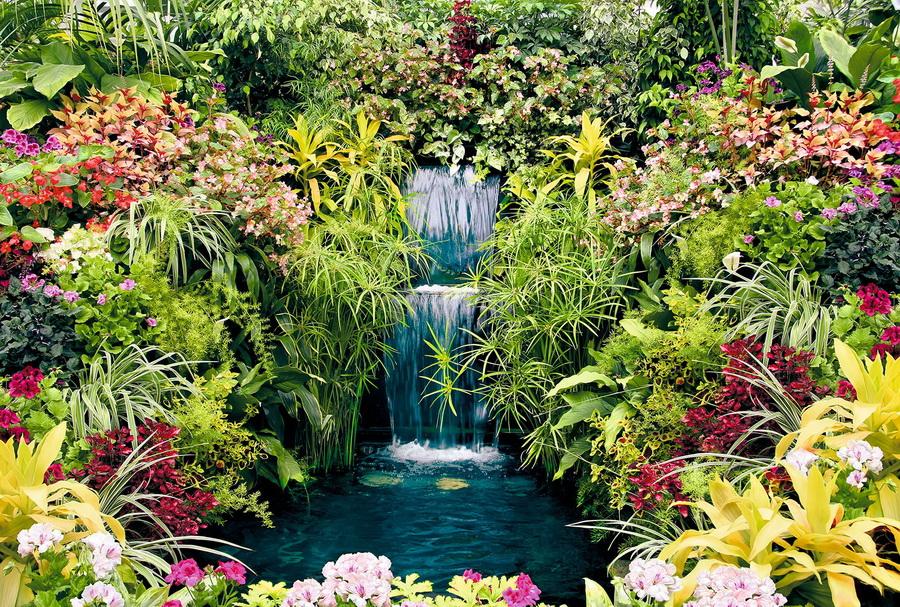 Фотообои  400*270 Сад Ботаничкий сад