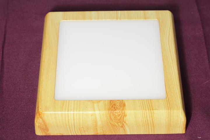 Светильник светодиодный панель 24Вт СОСНА квадрат