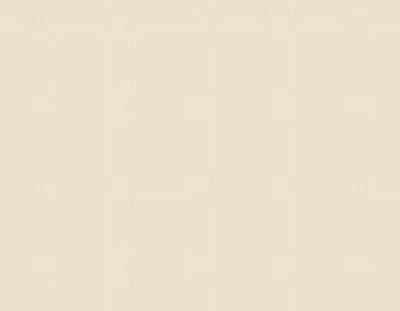 Детали меб. 16х600х2700мм ваниль