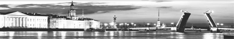 ПВХ панель Санкт-Петербург 964*484